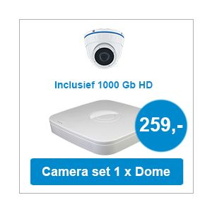 Camera set met NVR + 1 Dome camera