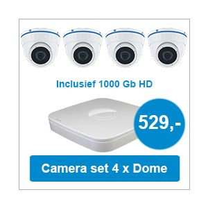 Camera set met NVR + 4 Dome camera